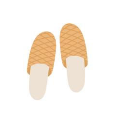 Brown slippers flat pair vector