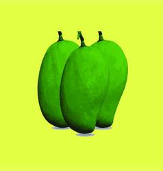 fresh green mango vector image