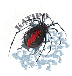 Katipo spider vector