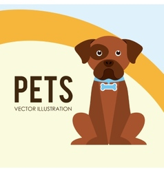 pets poster vector image