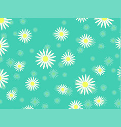 White daisy chamomile cute flower plant vector