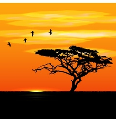Sunset tree and birds silhouettes vector image