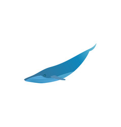 blue whale icon isolated on white background vector image