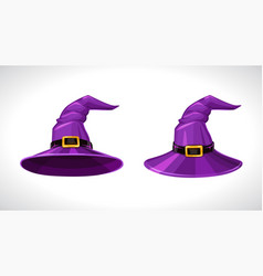 cartoon purple witch hats above and bottom view vector image