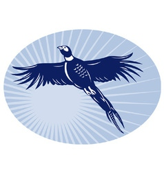 Pheasant bird flying retro vector