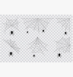set black spiders hanging from spider webs vector image