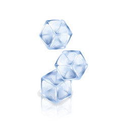 three ice cubes isolated on the white background vector image