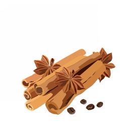 Cinnamon sticks and anise star vector