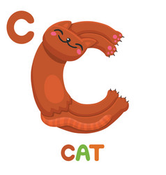 c is for cat letter c cat cute animal alphabet vector image