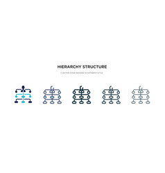 hierarchy structure icon in different style two vector image