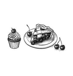 Ink sketch cherry pie vector