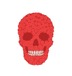 Stylized red verbena skull on white background vector