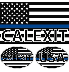 USA flag blue stripe calexit vector image