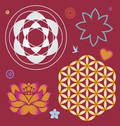 collection of symbols of a lotus and life flower vector image vector image