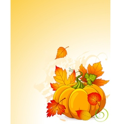 Autumn Pumpkin vector image vector image