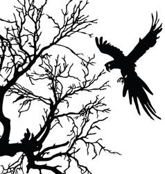 Ara and tree black silhouette vector