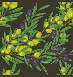 Branches with leaves and olive berries vector