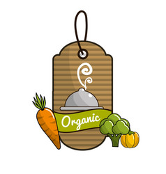 Emblem vegetarian food icon stock vector