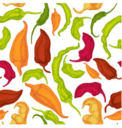hand drawn pepper seamless pattern vector image