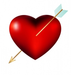 heart with arrow isolated vector image
