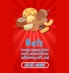 nuts concept banner comics isometric style vector image