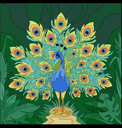 tropical bird peacock composition vector image