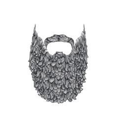 long beard vector image vector image