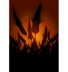 flowers silhouetted at sunset vector image