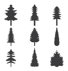 Set of abstract stylized balack trees silhouette vector image vector image