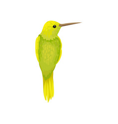 Chartreuse yellow hummingbird tiny colibri with vector