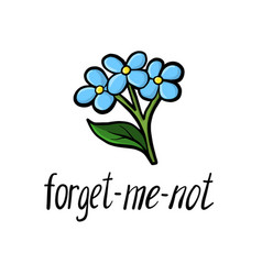 Flower forget-me-not vector