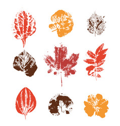 Grunge colored leaves stamps vector