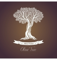 Natural olive oil tree logo for olive grove vector