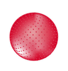 red fitness pointed ball isolated on white vector image