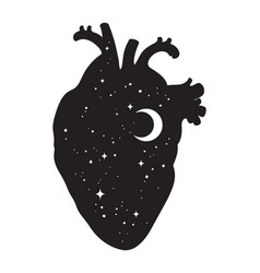 Silhouette human heart with universe inside vector