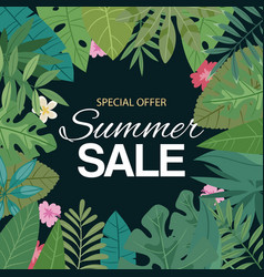 tropical summer sale banner vector image