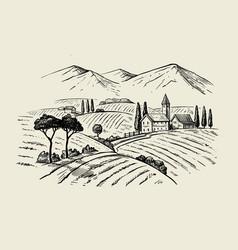 vintage hand drawn wineyard vector image