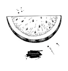 Watermelon slice drawing isolated hand vector