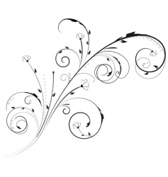 floral swirl ornament vector image