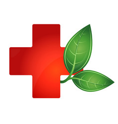 red cross medical and green leaf vector image