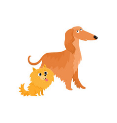 cute funny dog characters - afghan hound and vector image vector image