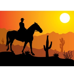 man on the horse in desert vector image vector image