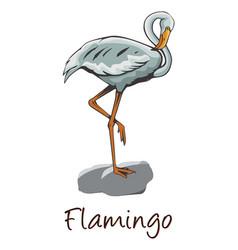 flamingo color vector image vector image