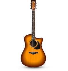 Guitar Realistic Isolated vector image vector image