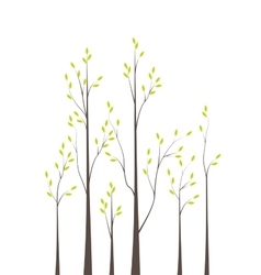 Trees 42 vector image