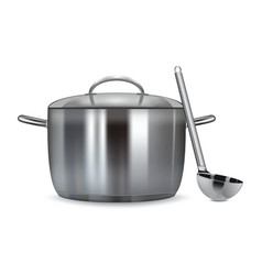 a stainless pan isolated on a white background vector image