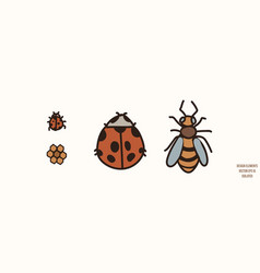 Bee and ladybug gender neutral ba vector