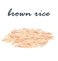 Brown rice healthy food high fiber vector