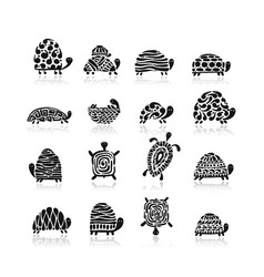 turtle logo set for your design vector image