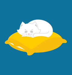 white cat sleeps on pillow sleeping kitten pet vector image